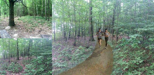 Vlevo je dnešní stav porubského lesa uplanetária, vpravo pak představa magistrátu, který dá na proměnu 8,75milionu korun.