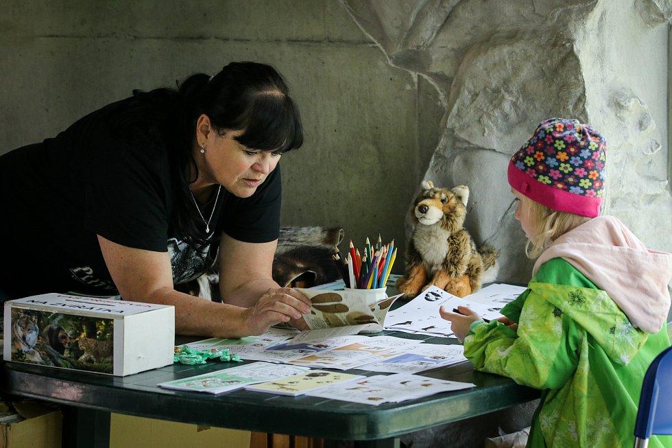 Jak se žije rysům a dalším šelmám v Beskydech. Akce pro veřejnost v ostravské zoologické zahradě, 4. května 2019 v Ostravě.