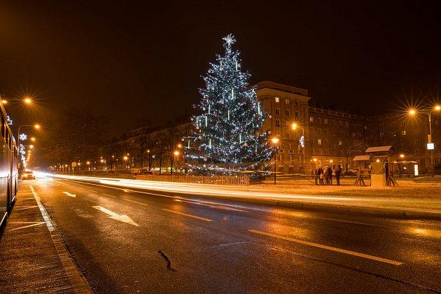 Ostrava-Poruba má svůj vánoční strom na Hlavní třídě na středovém pásu naproti Alšova náměstí. Snímky zaslala Pavlína Nováčková.