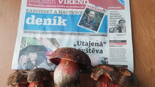 Hřiby nalezené v lese u Havířově 18. května 2019 panem Antonínem Winklerem.