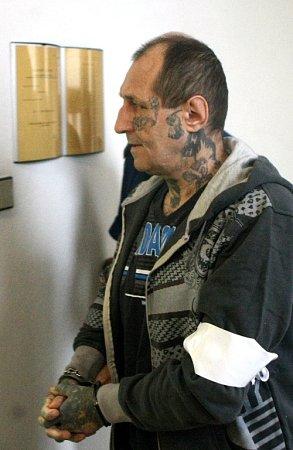 Petru Gajdošovi za vraždu družky hrozí až osmnáct let vězení.