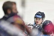 Utkání 32. kola hokejové extraligy: HC Vítkovice Ridera - PSG Berani Zlín, 4. ledna 2019 v Ostravě. Na snímku Patrik Zdráhal.