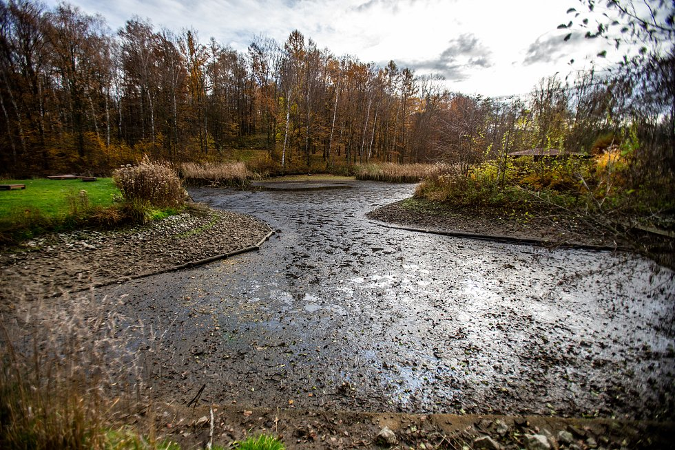 Kouzelný podzim a výlov rybníka v ostravské zoo, 16. listopad 2019.