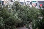 Prodej vánočních stromků. Ilustrační foto.