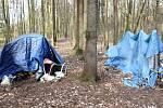 TÁBOR bezdomovců v lese přímo pod porubskou fakultní nemocnicí, Karla je ukrytá v modrém přístřešku vzadu.