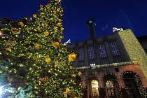 Ve čtvrtek 29. listopadu v podvečer byl slavnostně rozsvícen vánoční strom před Novou radnicí v Ostravě.
