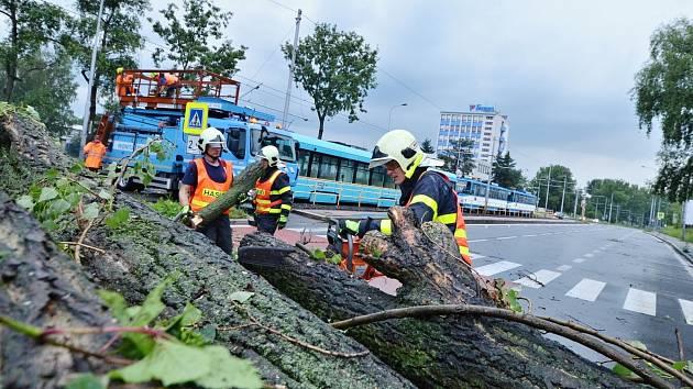 Mezi následky přívalových bouří patřilo i odstraňování stromů v ulicích Ostravy.