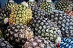 Africké trhy v Trojhalí, 13. července v Ostravě.