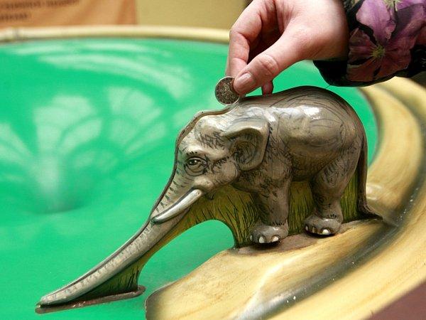 Mincotoč ve sloninci.