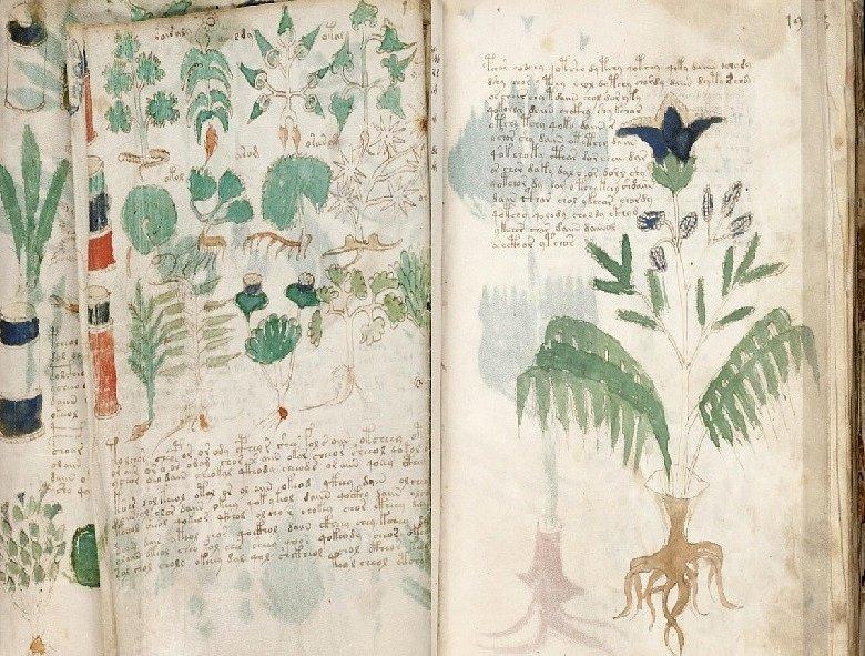 Tajemná kniha psaná kdovíkdy, kdovíkým a kdovíjakým jazykem fascinuje badatele už několik staletí.