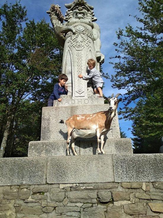 Koza Rozárka u sochy boha Radegasta.