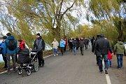 O víkendu se uskutečnil výlov největšího rybníka v Moravskoslezském kraji Bezruč. Událost je každoročně vyhledávanou podívanou.