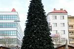 Vánoce 2016 bude v centru Ostravy zdobit strom umělý.