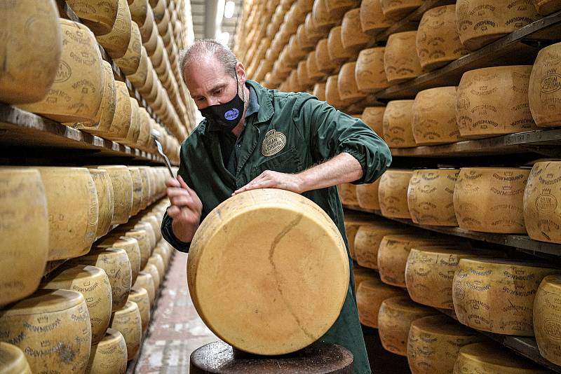 Tradiční sklad sýrů společnosti Gran Moravia, 11. srpna 2021 v Bevadoro, Itálie. Zaměstnanec Antonio Casalin provádí tzv. battitore (klepač sýrů).
