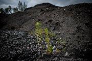 Hromady kalů znamenají pro Vratimov dlouhodobou ekologickou zátěž.