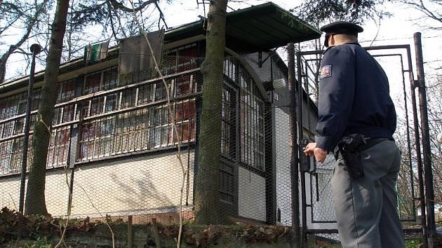 Policisté kontrolovali i chaty v Ostravě-Přívoze
