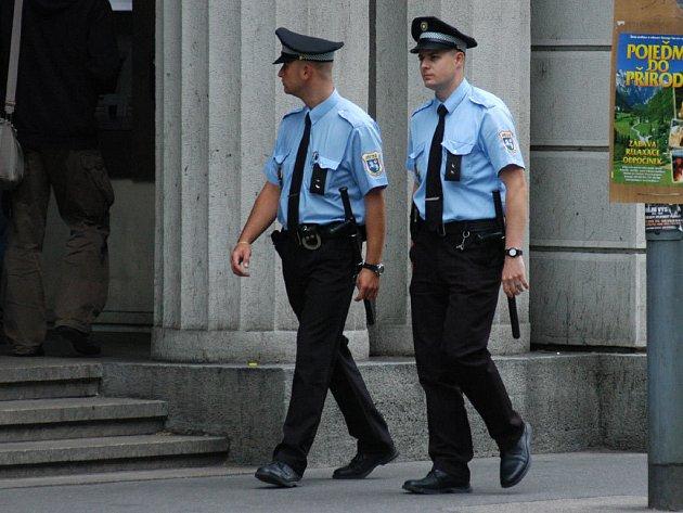 Osmitýdenní audit by měl odhalit případné rezervy v práci městské policie.