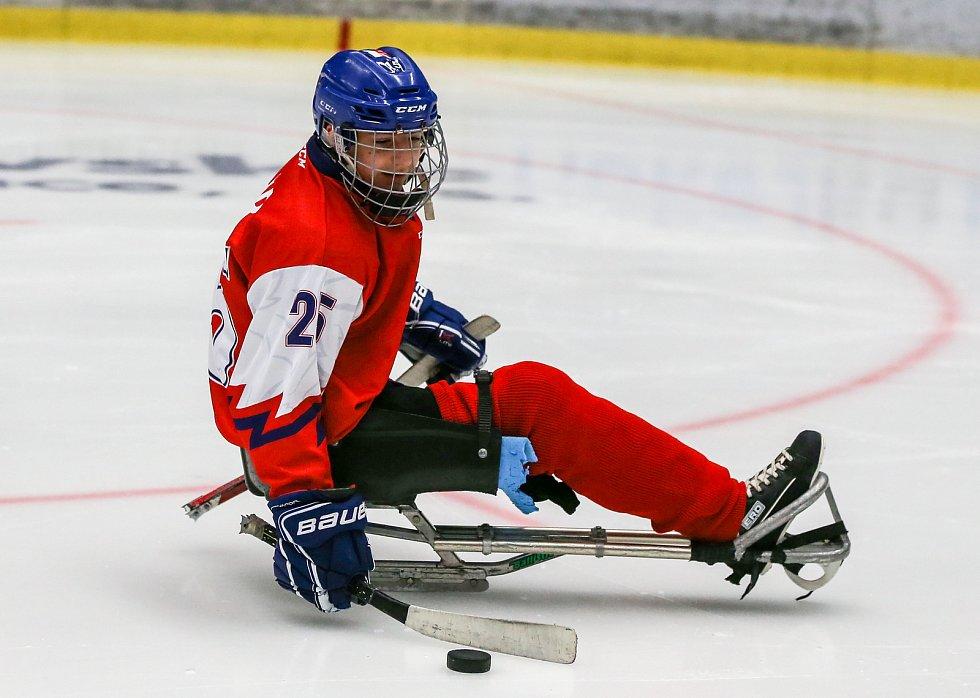 Tisková konference k Mistrovství světa v para hokeji 18. ledna 2019 v Ostravě. Na snímku