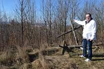 Vedoucí projektu Miroslav Vrána říká, že v Trojickém údolí by byly nejen chodníky pro pěší, cyklostezky, bikepark, koňské stezky a další sportoviště, ale i tři rybníky.
