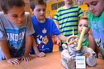 Děti ze základní školy Hoštejn vyrobily do soutěže o maskota elektrárny Dlouhé Stráně šnorchláče hlubinného, který získal první místo a dětem přinesl pětadvacet tisíc korun na školní výlet.