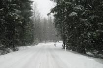 Takto během pár minut vypadala v sobotu cesta na Rejvíz