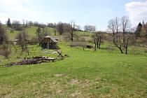 Zaniklá osada Zastávka na Javornicku v roce 2013.