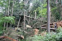 Větrná smršť za sebou zanechala v Dolní Moravě velké škody.
