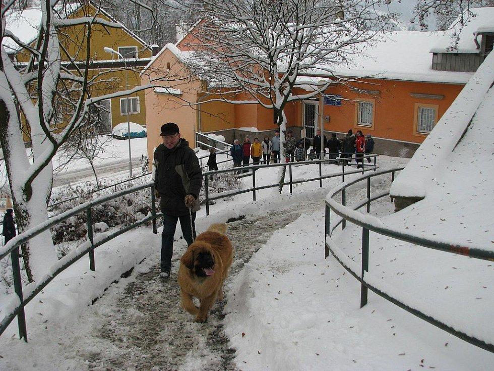 Snímky ze závodu recesistů v Zábřehu