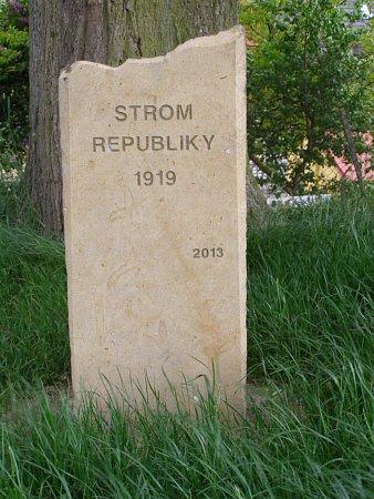 Strom republiky zasadili 1.května 1919vtehdy ještě samostatné obci Skalička, dnešní místní části Zábřehu. Dnes zdobí prostranství před základní a mateřskou školou vulici Rudolfa Pavlů.