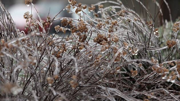 Ledový déšť. Ilustrační foto.