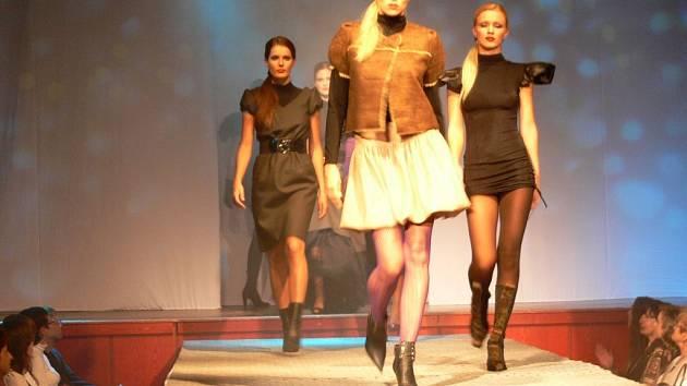 Přehlídka v Mohelnici nabídla špičkové modely.