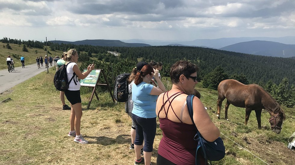 Turisté v Jeseníkách, léto 2020