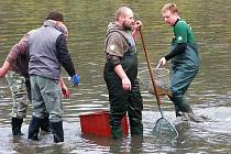 Rybník Dymák na okraji Bohutína vydal ve státní svátek 28. října své bohatství. Rybáři vylovili kapry, amury, líny, tolstolobiky i štiky.