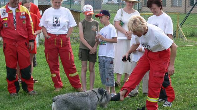 Ukázka práce záchranářských psů vzbudila velký ohlas.