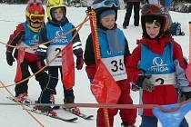 Děti ze šumperských mateřských školek se učí lyžovat v jesenickém skiareálu Přemyslov.