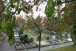 Šumperský hřbitov v dušičkovém období.