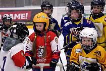 Týden hokeje. Ilustrační foto