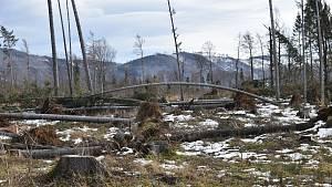 Škody po vichřici ve Zlatých Horách