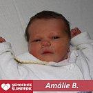 Amálie B., Velké Losiny