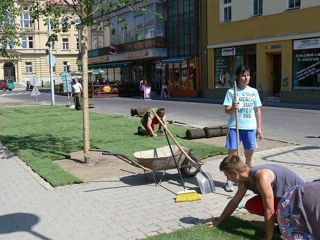 Dělníci pokládají pásy trávy v ulici 17. listopadu