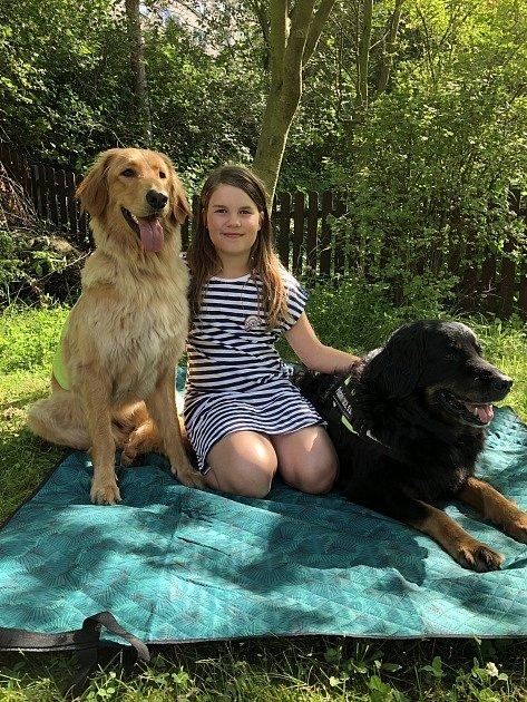 Canisterapeutické fenky Bella a Anička