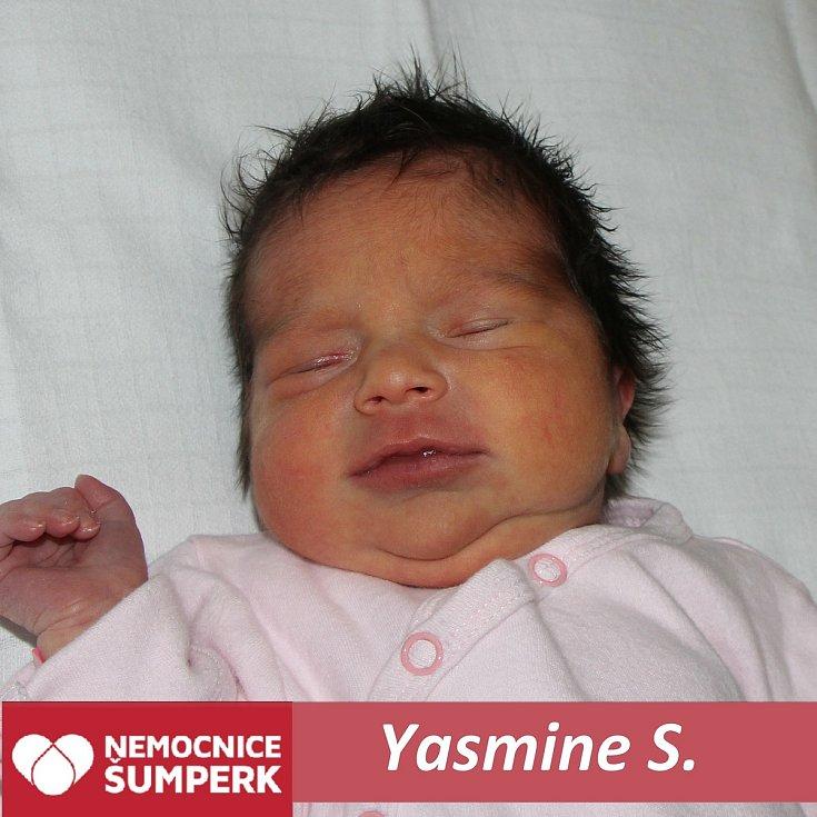 Yasmine S.Mohelnice