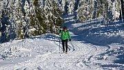 Běžkař v okolí Pradědu