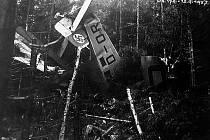 Trosky Junkersu W 34, který v roce 1937 havaroval v lese nedaleko Supíkovic