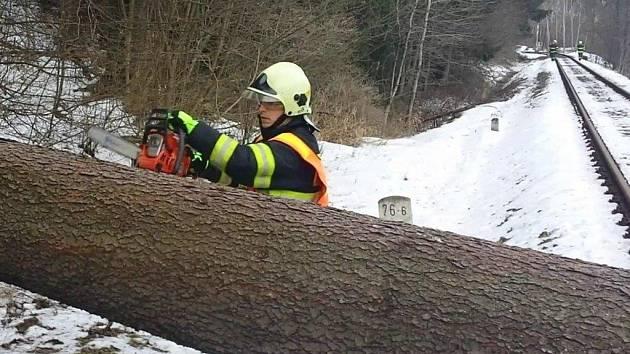 Odstraňování stromu padlého přes železniční trať u Malé Moravy