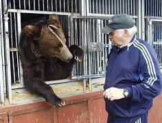 Jeden z medvědů cirkusu Berousek.