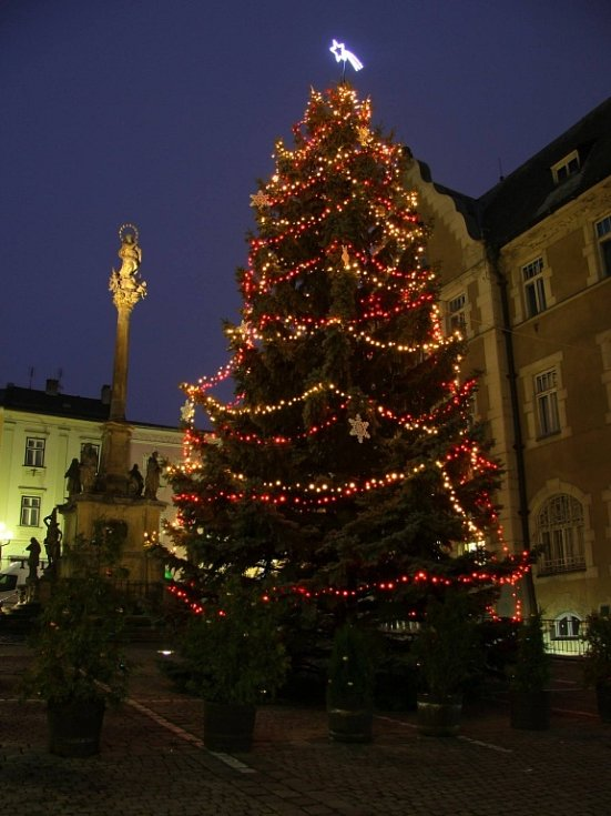 Vánoční strom v Šumperku