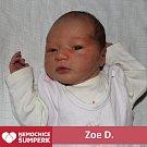 Zoe D., Hostice