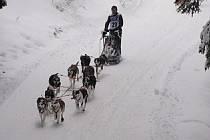 Snow Film fest