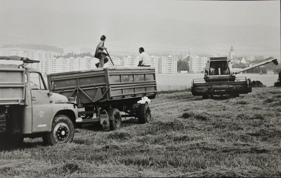 Sklizeň na polích nad Šumperkem